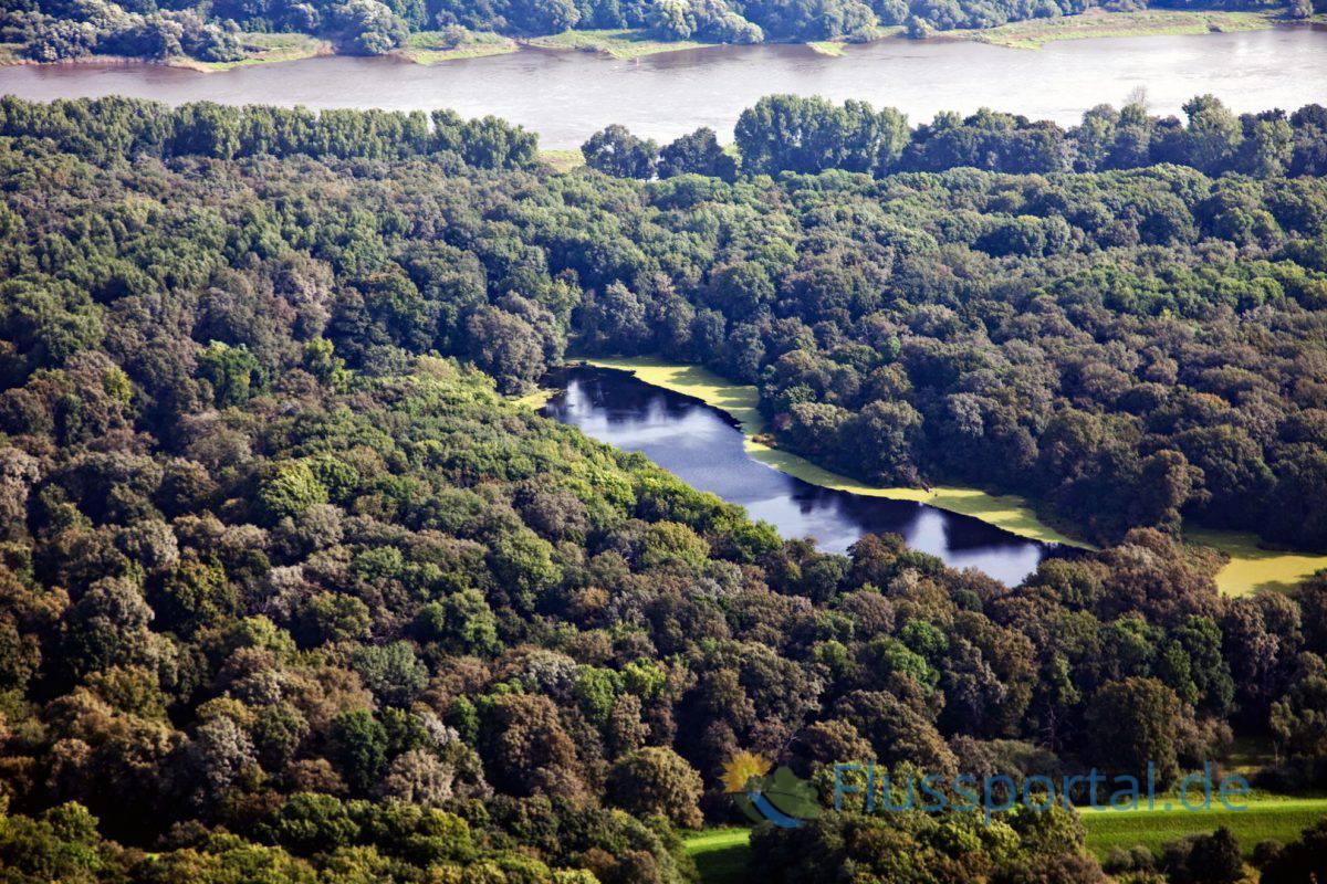 1.Der Lauf der Mittleren Elbe folgt 487 Flusskilometer den Urstromtälern der Eiszeiten