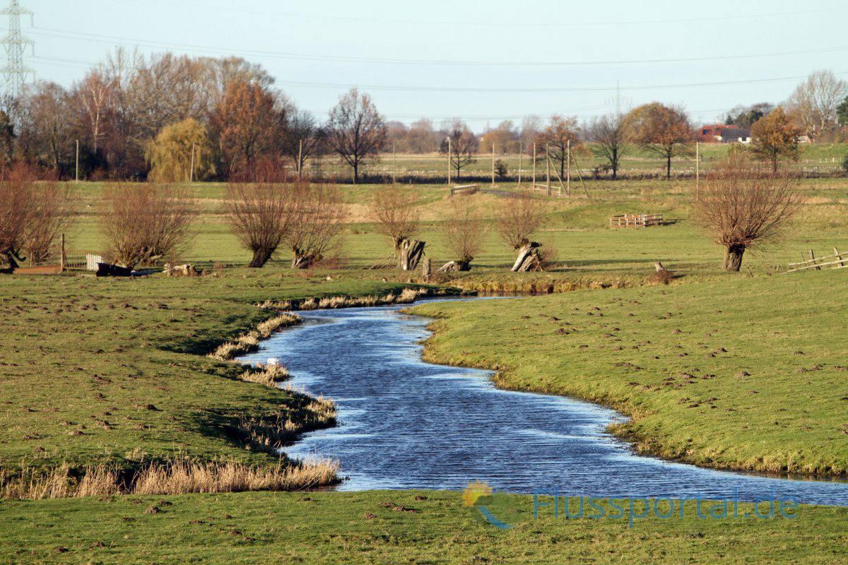 Das Flüsschen Wedeler Au, das an der Landesgrenze Hamburgs entspringt und knapp 13 Kilometer quer zur Elbe fließt