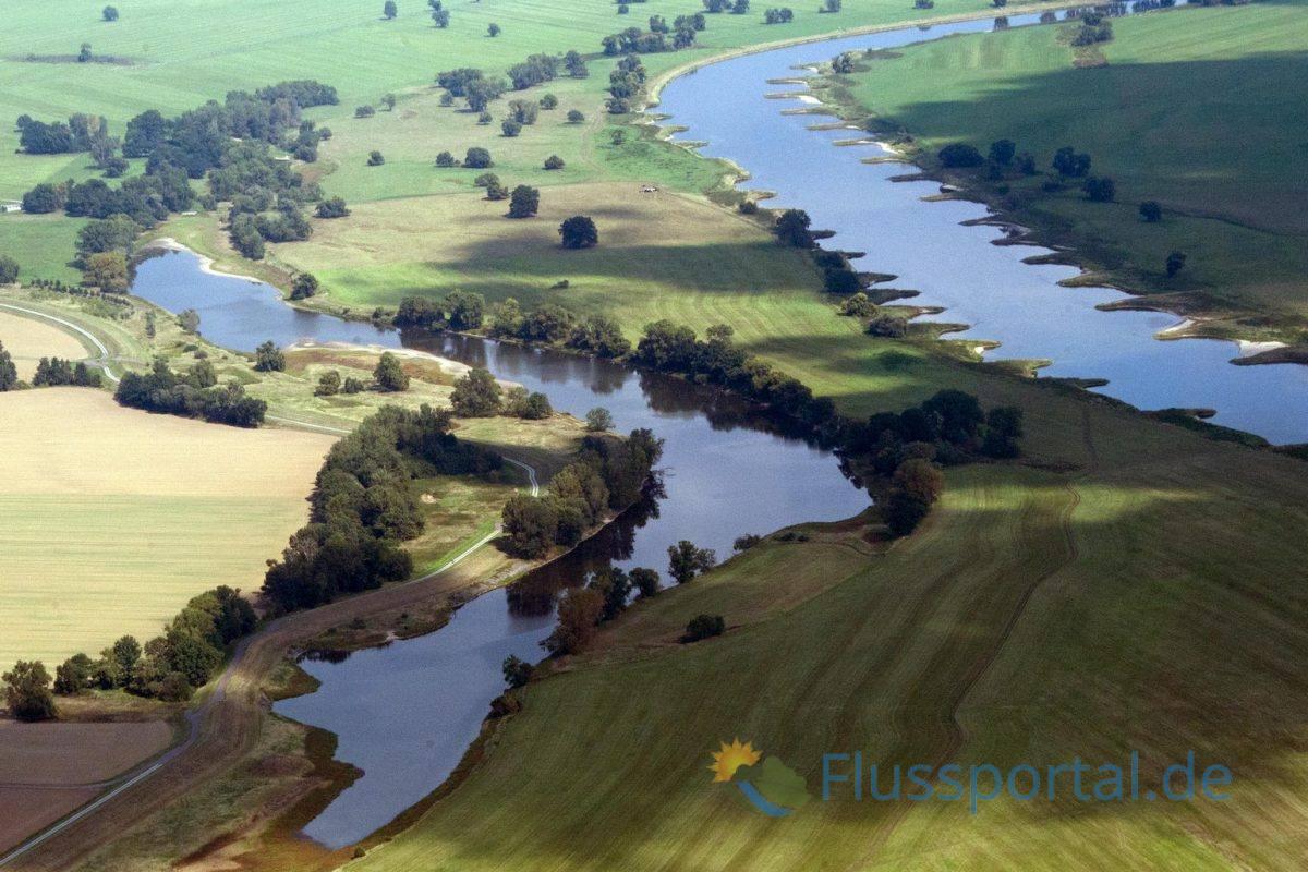 Das Bleddiner Riß kurz vor der Mündung der Schwarzen Elster