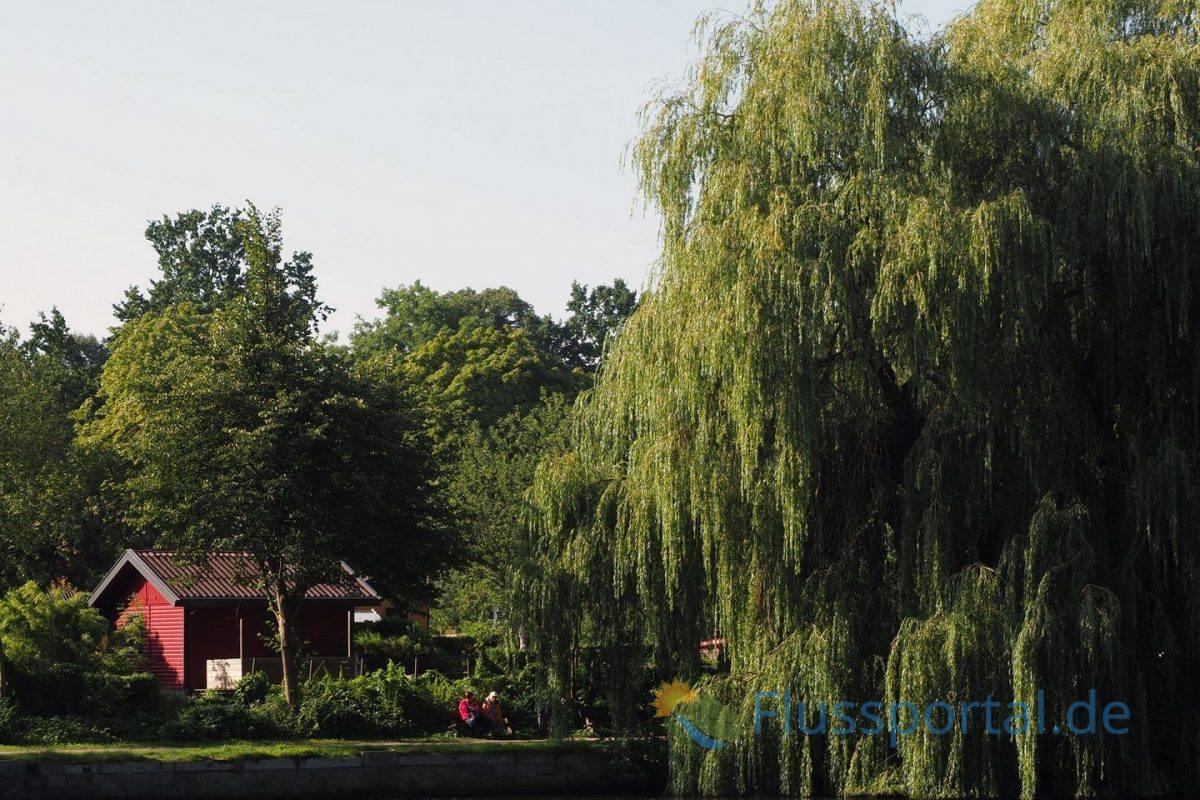 Den Villen gegenüber erstreckt von der Inselstraße bis nach Ohlsdorf der breite Gürtel der Gartenkolonien, deren Ufer prächtig planvoll prächtige Trauerweiden am Alsterlauf angepflanzt worden sind.