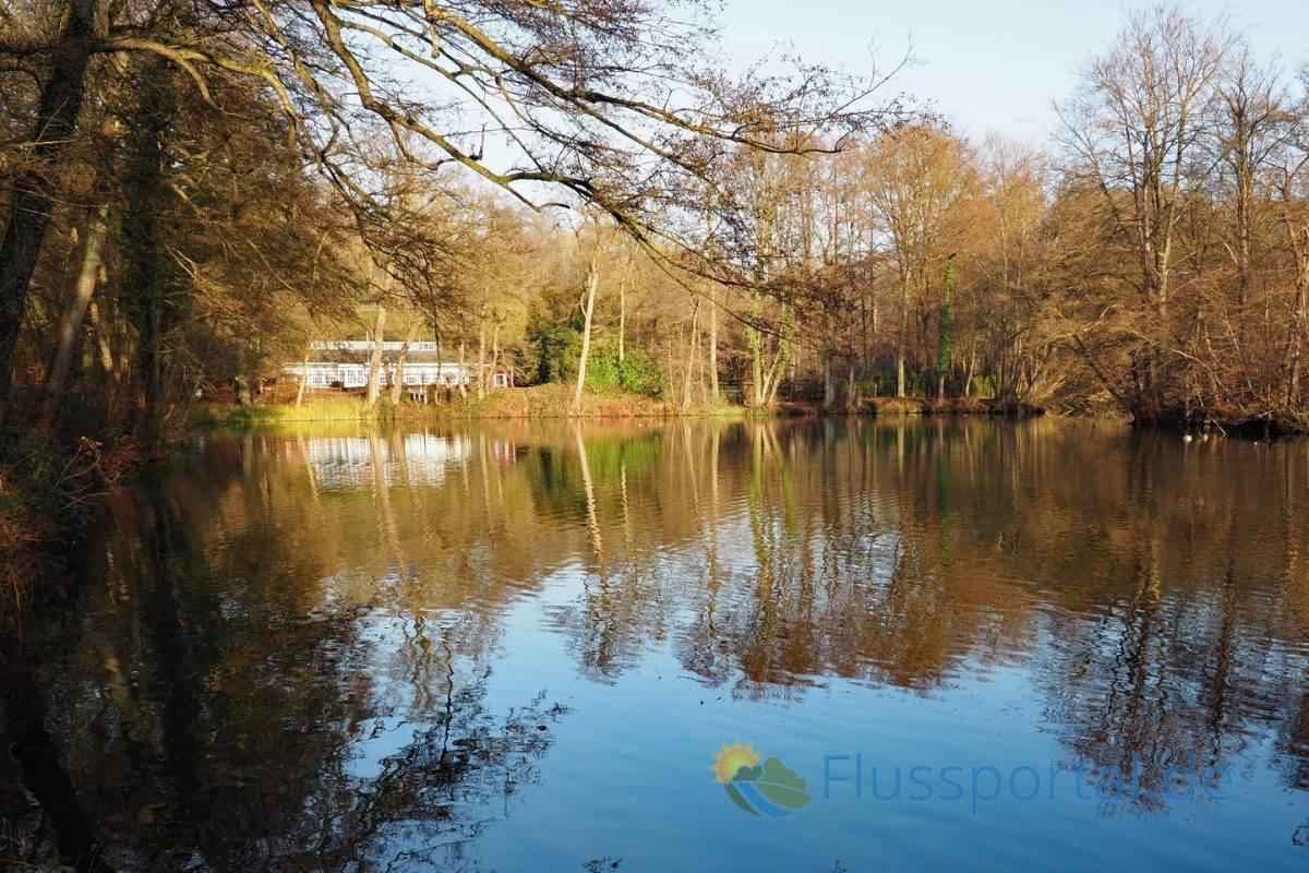 Der Rodenbeker Teich mit dem Quellhof im Hintergrund