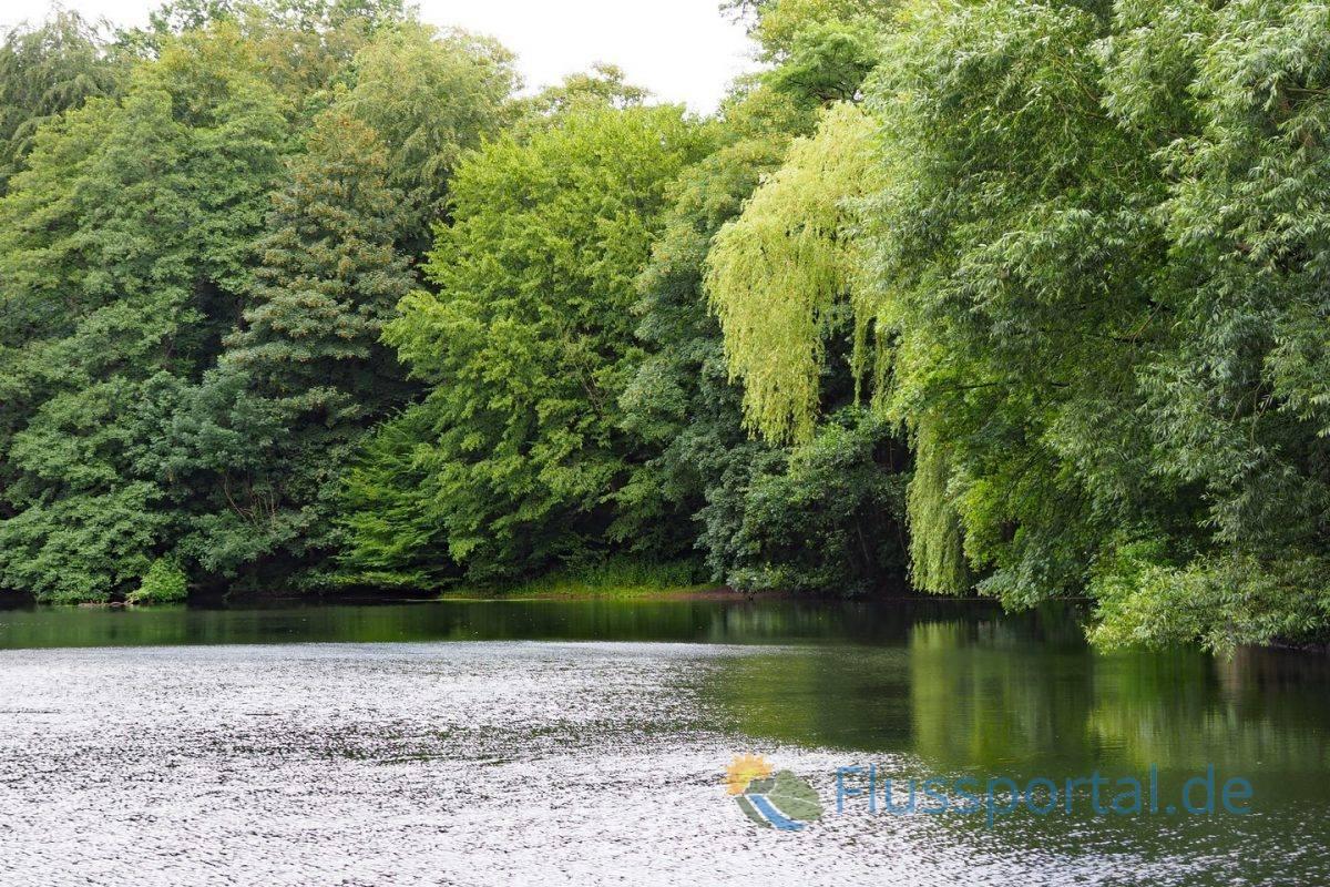 Das 130 Meter lange Schleusenbecken hat sich inzwischen zu einem kleinen See entwickelt