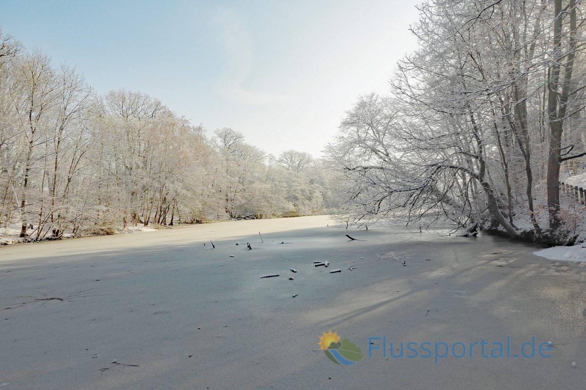 Die Ufer des Mühlenteiches gehört bereits zum 71 Hektar großen Hamburger Naturschutzgebiet Hainesch/Iland.
